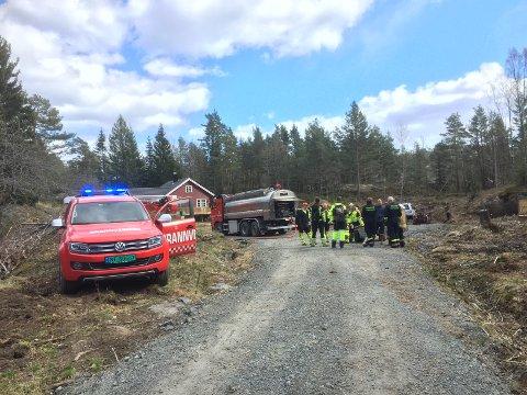 TRE BRANNER: På Borteid i Kragerø var det tre branner på tre dager denne helgen. Det er tørt og politi og brann advarer sterkt mot å brenne bråte.