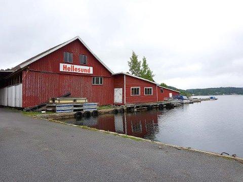 KJØPES: Tim Kronborg i Agnar AS har inngått avtale om å kjøpe aksjene i Hellesund Eiendom AS hvor det ligger 20 mål tomt med strandlinje i Hellefjorden.