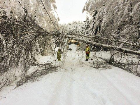 - Vi har ryddet mye snø. Men det er også mye trær og busker som har falt over banen som vi jobber for å rydde bort, sier Torgald Sørli, senior kommunikasjonsrådgiver og samfunnskontakt infrastruktur i Bane Nor.