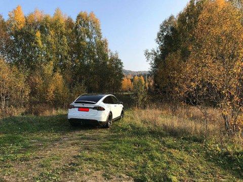 TJUVFISKET: Mannen hadde parkert Teslaen sin og gått ned for å fiske laks - ulovlig. Morten Harangen kontaktet Svein Karlsen i fiskeoppsynet som tok en prat med buskerudmannen som slipper anmeldelse. Foto: Privat