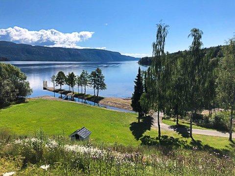 UTE PÅ MARKEDET: Denne utsikten kan være noe å våkne opp til. Hele parkområdet, strandkanten og brygga hører med til den 5,5 mål store eiendommen. Foto: Privat