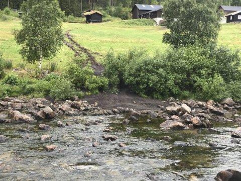 Rett i elva: Møkkautslippet gjør Austbygdeåi lite innbydende for badegjester.