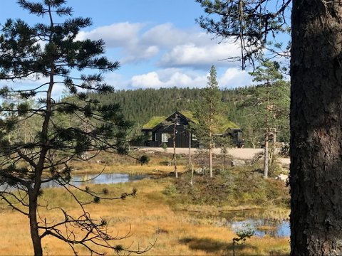 BYGGER UT: Løvenskiold-Fossum starter utbyggingen av to nye felt med 20-25 hyttetomter på Svanstul. 47 tomter er solgt på fire tidligere felter.