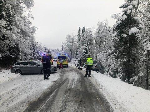 MJAUGETJØNN: Trafikkulykka skjedde på Bolkesjøvegen, ikke så langt fra Mjaugetønn. Foto: Åslaug Birgitte Græsvold