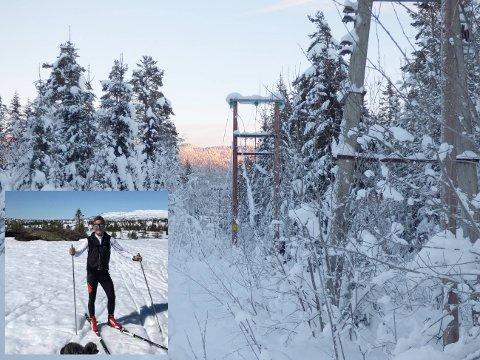 TUNGT: Tung, våt snø på trærne og ising på linjene har skapt trøbbel for elektrisitetsverkene i distriktet de siste dagene. Bildet er fra en tidligere anledning, og er ikke knyttet opp mot strømstansen i Jondalen og Blefjell de siste dagene.