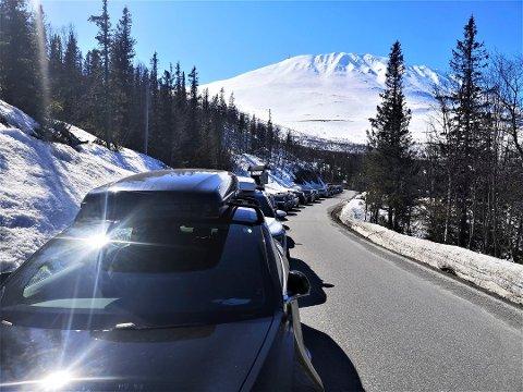 KØ: Køen med parkerte biler langs Kvitåvatnvegen ved gamle Langefonn fjellstue ble bare lengere og lengere utover dagen lørdag.