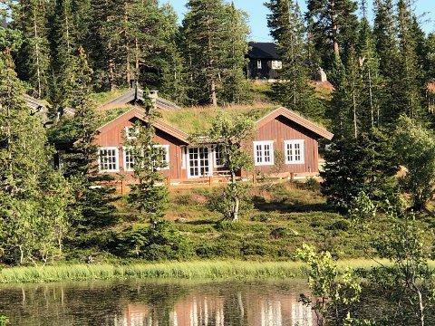 Bjarne Haugen leier ut denne hytta på Vegglifjell i sommer. Men så langt har ingen vist sin interesse.