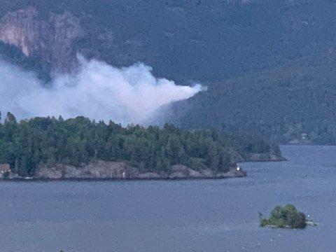 BRENNER: Tirsdag kveld brenner det i skogen på Valebø.