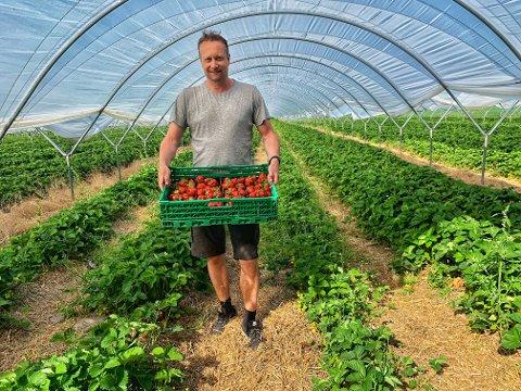 UNØDVENDIG: Petter Borgestad sier han ga beskjed til jordbærplukkerne om å bruke planovergangen. - Jeg forstår at Bane Nor er redd for sikkerheten, men anmeldelse er ikke veien å gå, sier han.