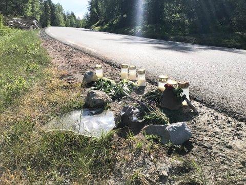 ØKNING I DØDSULYKKER: I Vestfold og Telemark har elleve mennesker mistet livet i trafikken så langt i år. Det er en økning fra fjoråret.