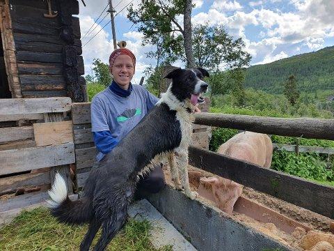 SOMMERJOBB: Vemund Norum Kivle har sommerjobb på Bergstaulen seter. Der har han blant annet hovedansvar for å mate grisene. Hunden Vetle gjør også en viktig jobb på setra.