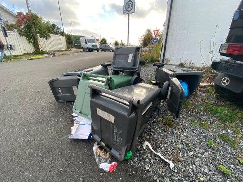 SØPPELKASSER: Vinden har veltet en rekke søppelkasser i Porsgrunn sentrum. Foto: Theo Aasland Valen
