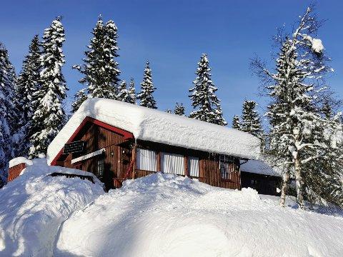 BØR MÅKE: - Det ligger mye snø på mange hyttetak nå, og det er all grunn til å få det ned. Måker du ikke, kan det bli en dramatisk avkort av forsikringsoppgjøret om det går galt, sier takst- og fagmann Joar Lofthus.  (Foto: Iltakst AS)