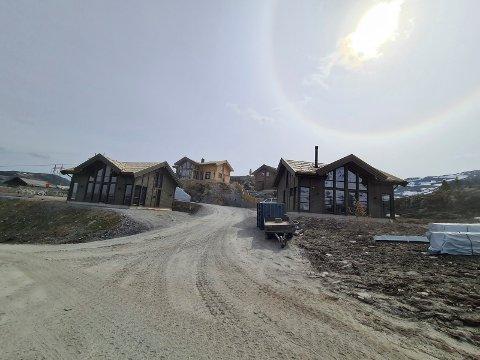 KOLLEN: Her på Kollen, hvor ordfører Steinar Bergsland bygger hytte, var det Arbeidstilsynet dukket opp på uanmeldt tilsyn. De fant litt av hvert.