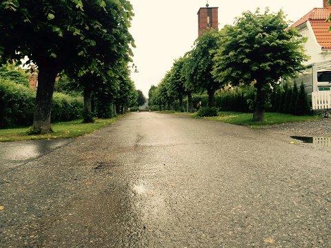 Skogveien Notodden