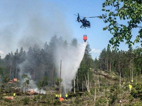 I BEREDSKAP: Det er full beredskap mot skogbrann. (Foto: Trond Kaasa)