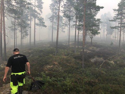 FRIVILLIGE: har ankommet området ved Elgsjø for å bistå i slukkningsarbeidet.  (Foto: Kristine L. Koslung)