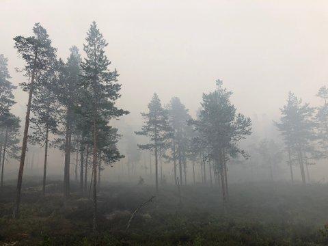 TETT RØYK:Det skal være mye røyk i området som trekker nedover på grunn av regnet.