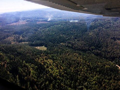 OPPDAGET FRA FLY: Notodden og Kongsberg flyklubb oppdaget brannen ved Rakketjønn, da de fløy over området.