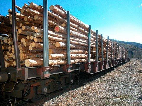 SOMMEREN 2019: Utredningen av alternative løsninger til plassering er ny  tømmerterminal er ventet til sommeren.