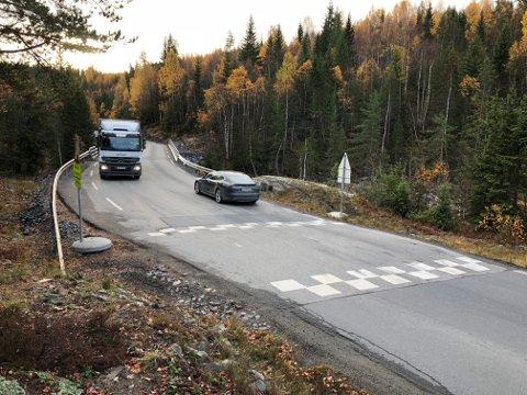 PLANER: Statens vegvesen Region sør er i gang med et planprosjekt for E134 fra Saggrenda der nyveien vil stoppe og fram til Elgsjø.