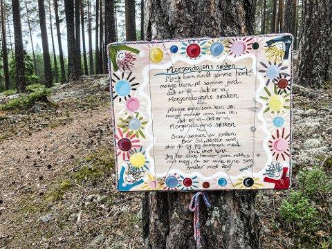 """NYTT: Dette er det nye bildet til """"GAB"""", Gro Anita Bakken, ute i skogens galleri."""
