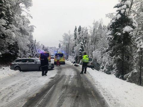 MJAUGETJØNN: Trafikkulykka skjedde på Bolkesjøvegen, ikke så langt fra Mjaugetønn.