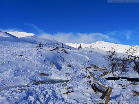 ØDEALGT: En hytte i Tokke ble ødelagt av et stort snøskred denne uka.