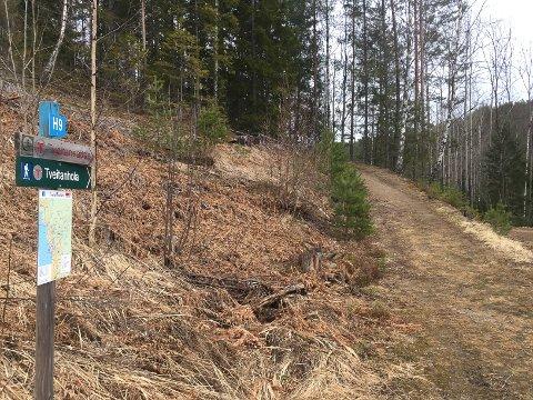 PASS PÅ: Det var langs stien her fra Skogenfeltet og opp til  Tveitannatten at Hans Runar Haslekås oppdaget fiskesnøre over stien på tre steder.