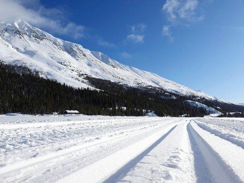 SPOR: Lørdag er det klart for Telemarks eldste klassiske turrenn. Sporene ligger klare gjennom Gausdalen.
