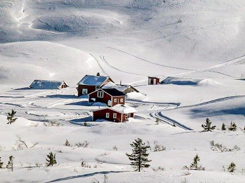 VISJON: Lifjellsamarbeidet har en visjon om at LIfjell skal bli et ettertraktet turområde både sommer og vinter for befolkning4en i hele Sør-Øst Norge. Bildet fra Hollane er  for ordens skyld ikke tatt i vinter.