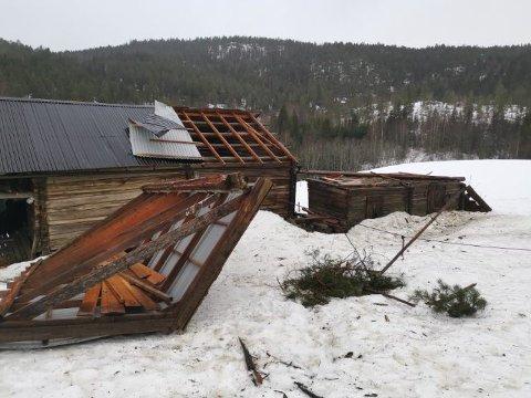 KASTET AV: Taket på grisehuset ble kastet av og havnet foran den gamle låven.