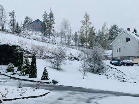 VINTER IGJEN: Det var hvitt da folk på Kongsberg våknet 1. mai 20202.