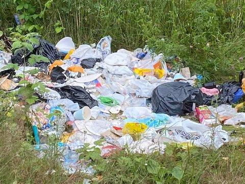 GRISERI: Dette lasset med søppel ligger dumpet i grøftekanten langs Valebøveien. Foto: Privat