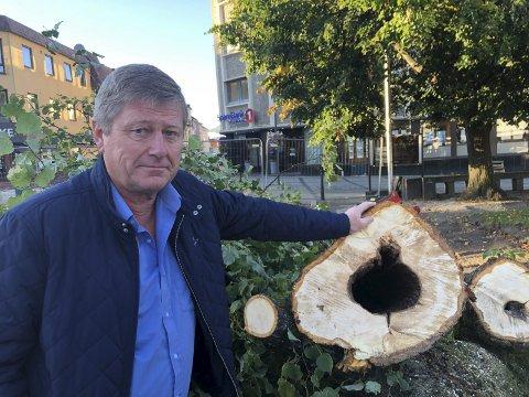 RISIKO: Ragnar Frøland var aldri i tvil om at trærne måtte felles etter å ha lest tilstandsrapporten for trærne i Hesteskoen. – Vi støttet oss til faglige vurderinger, sier Frøland.