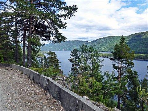 HØYERE OPPE: Den gamle Busnesvegen slynger seg i skogen i  liene litt høyere oppe en dagens fylkesvei langs Tinnsjøen går.