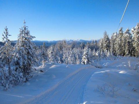 SKILØYPA: Skiløypa i Høgås er klar til bruk, og er et viktig lokalt tilbud for skientusiaster. Høgås velforening har ansvaret for å kjøre opp løypa