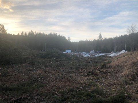 Skog er hogget, og området i ferd med å klargjøres for bygging ved Høgås Teknologipark.