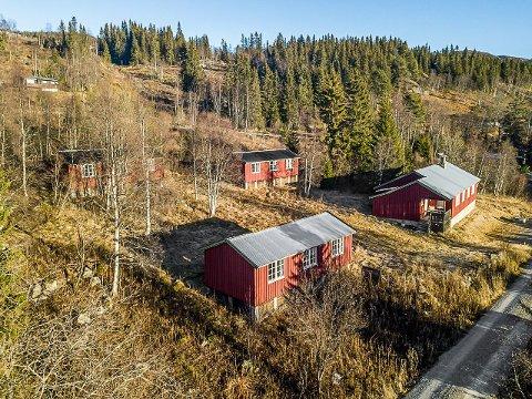 HYTTETUN: Eiendommen som er til salgs ble etablert i 1954, og hyttene har de senere år blitt benyttet som fritidseiendommer.