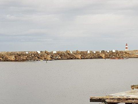 Helgen for en uke siden fikk nordsiden av moloen på Veiholmen plutselig hvite steiner. Ingen har så langt bragt på det rene hvem som har utført gjerningen og hvorfor.