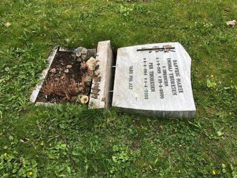 Dette synet møtte Kjell Dagenborg Sørensen da han skulle stelle med foreldrenes gravstøtte.