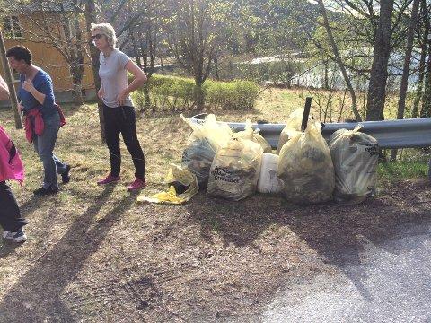 Søppel hentet opp fra naturen. Mange frivillige i Halsa stiller opp på den store dugnaden.