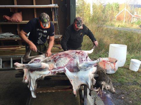 For å selge kjøtt til andre utenom jaktlaget, trengs én person som har godkjent kurs og kan foreta såkalt feltkontroll av slaktet.