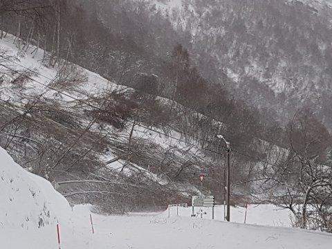 Snøskredet har gått over fylkesvei 63 ved Grandeneset. Skredet er om lag 100 meter bredt og 5 meter høyt.