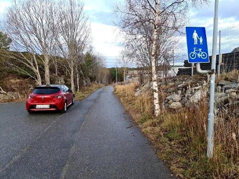 Tidens Kravs utskremte reporter parkerte i Myraskaret på Løkkemyra. Det er ingenting her som informerer om at denne gangveien går i retning Voldvatnet, hvor Anders Numedal gjorde de første funn av Fosnakulturen.