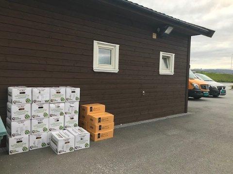 Sjåføren var på vei mot Molde for å selge mat på jazzfestivalen da det ble bråstopp på Bergsøya.
