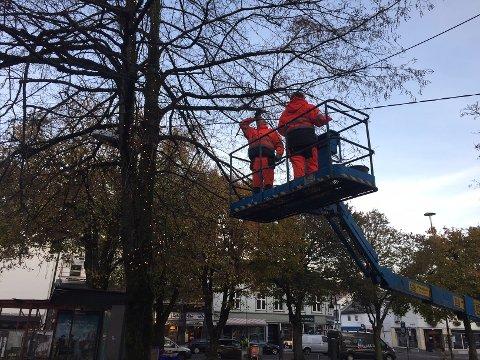 I GANG: Arbeidene med å pynte gatene i byen til jul startet på Farmannstorvet.