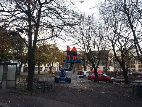 MYE JOBB: Det legges mye arbeid i å pynte byen til jul.  – Det er en kjempeprosess. Jeg tror ikke folk er klar over hvor mye jobb det er. Girlandere av ekte granbar bindes for hånd. Det er skikkelig håndverk som gjøres, sier Cecilie Sørumshagen, leder i Tønsberg Sentrum.