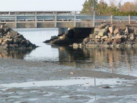GROR IGJEN: En gang i tiden var det mulig å komme gjennom Myrasundet med småbåter. Det er umulig i dag. Nå foreslår rådmannen i Tønsberg at det tas penger av havnekassa til undersøkelser av vanngjennomstrømmingen i sundet med tanke på senere mudring.