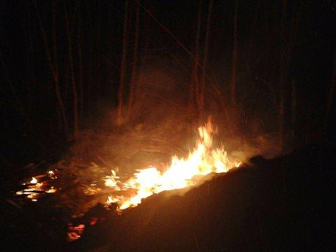 Det brant lystig i haugen da brannmannskapene ankom. Foto: Vestfold interkommunale brannvesen